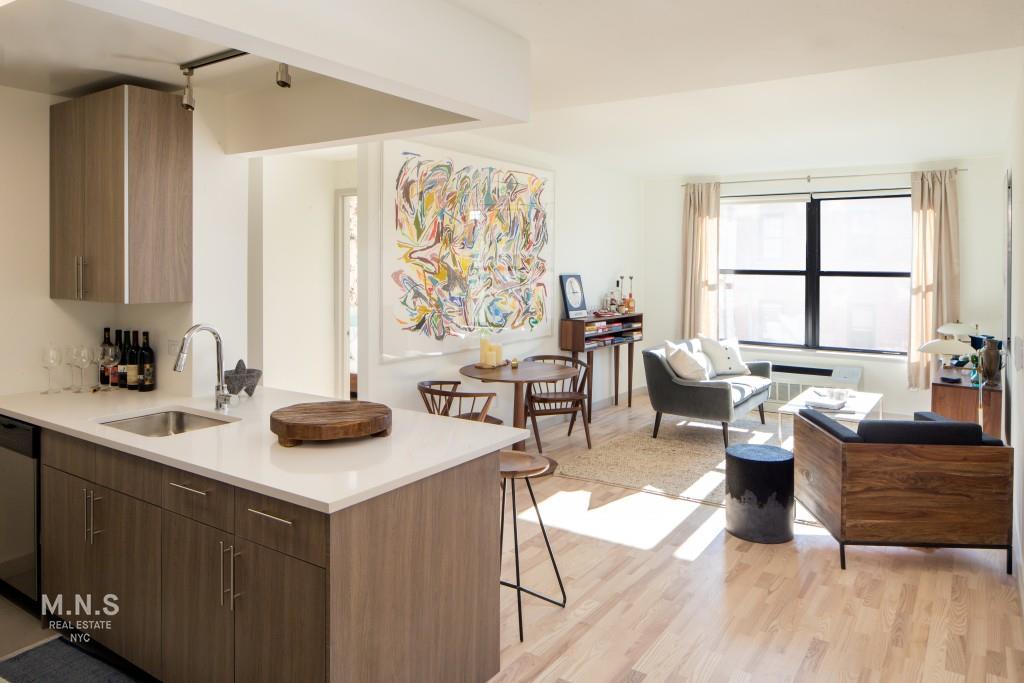 1133 Manhattan Avenue N-535 Greenpoint Brooklyn NY 11222