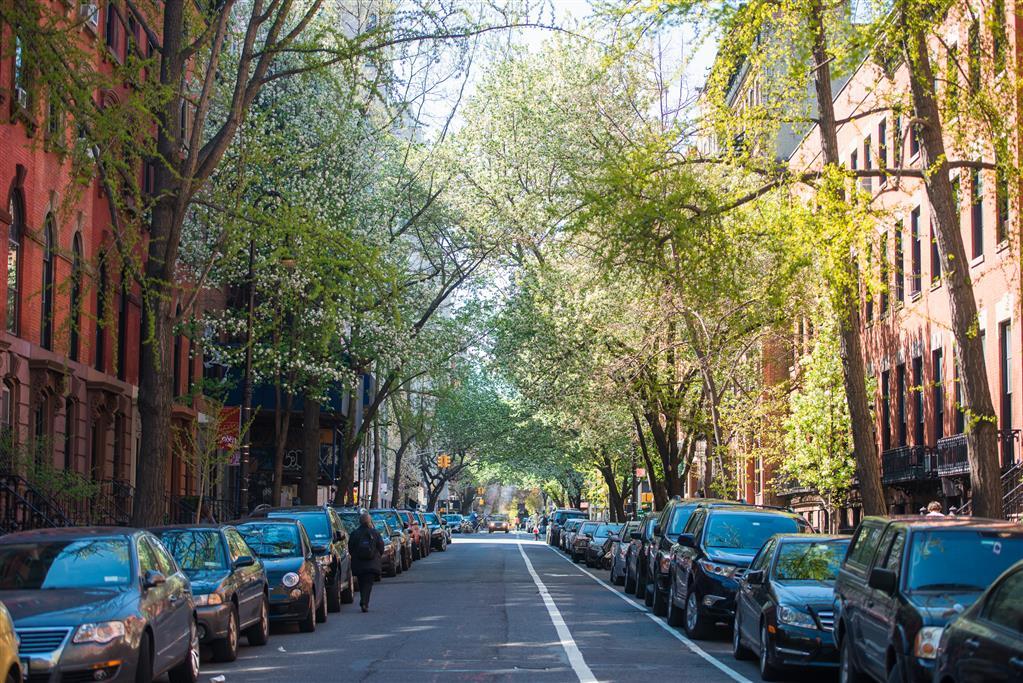 206 East 7th Street E. Greenwich Village New York NY 10009