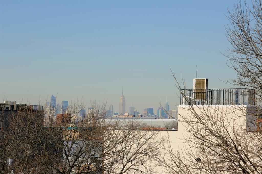 1748 Dean Street Crown Heights Brooklyn NY 11213
