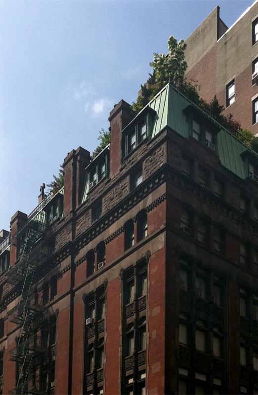 284 Fifth Avenue NoMad New York NY 10001
