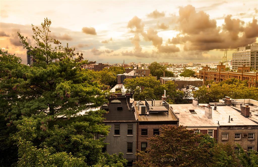 36 Grace Court Brooklyn Heights Brooklyn NY 11201
