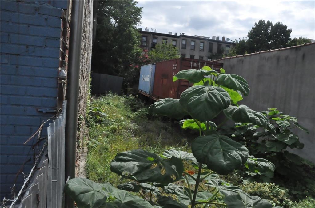 196 Clifton Place Clinton Hill Brooklyn NY 11216